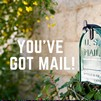 You've Got Mail!